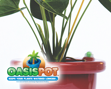Oasis Pot by FreNZLife